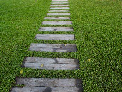 garden-path-1979619_960_720